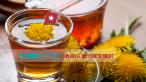 Détox : les plantes qui marchent vraiment