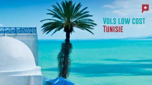 Etude Sur Les Compagnies Aériennes Les Moins Chères à Destination De  Tunisie