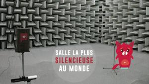 La salle la plus silencieuse du monde rend fou