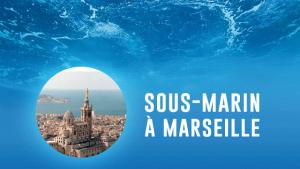 Un sous-marin à Marseille pour explorer la faune et la flore locale
