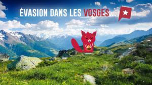 Un week-end dans les Vosges alsaciennes