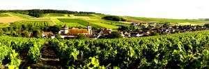 Quatre bonnes raisons de visiter la Bourgogne