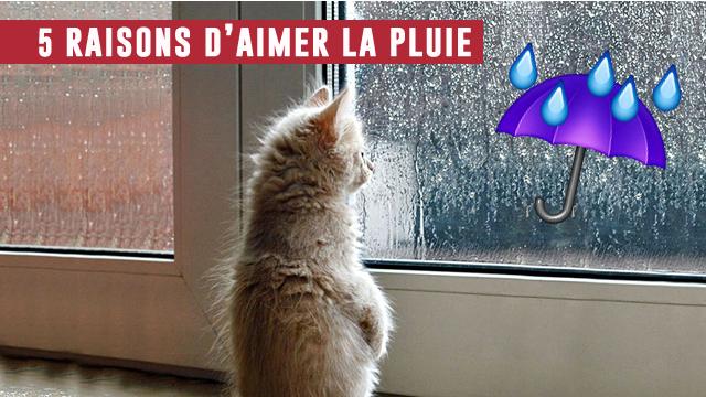 5 Bonnes Raisons D'aimer La Pluie, Même En été !