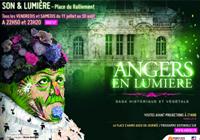 Angers en lumière 200x140