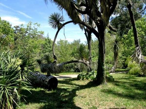 Antibes-Jardin-botanique-de-la-villa-Thuret