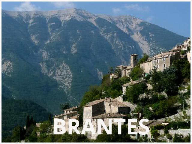 BRANTES - 640 x 480