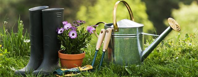 5 conseils pour jardiner malin for Conseil pour jardiner