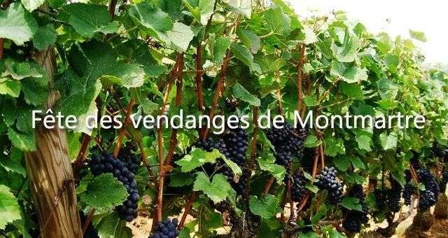 10 Bonnes Raisons D'aller à La Fête Des Vendanges à Montmartre