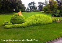 jardin botanique poitiers - Focus 200x140