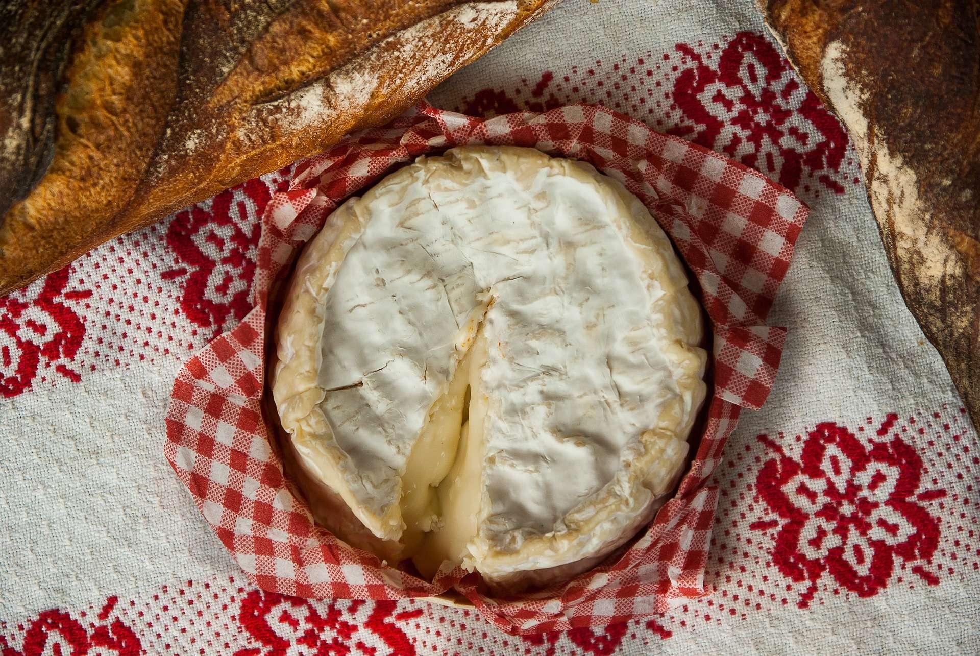 Les 5 Fromage Préférés Des Français
