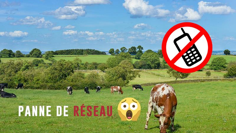 Pas De Réseau Dans Ma Commune !