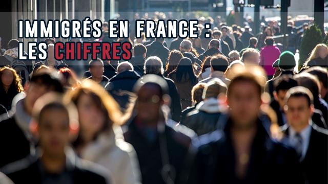 Villes Accueillant Le Plus Et Le Moins D'immigrés En France