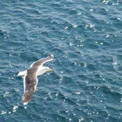 Finistère : Entre Terre et Mer