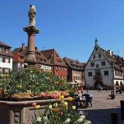 Idées de balades en Alsace