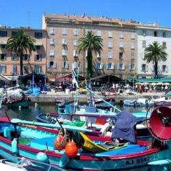La Corse : grande découverte