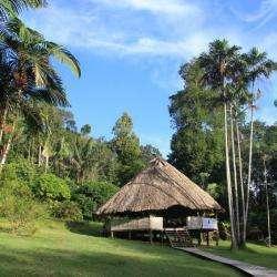 La Guyane, visite guidée