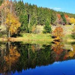 Les Vosges, entre lacs et montagnes