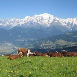 Jolis villages en Haute Savoie