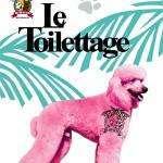 Toilettage1
