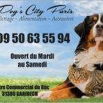 dogscity