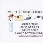 Brunocrozon