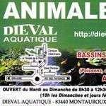 Dieval83